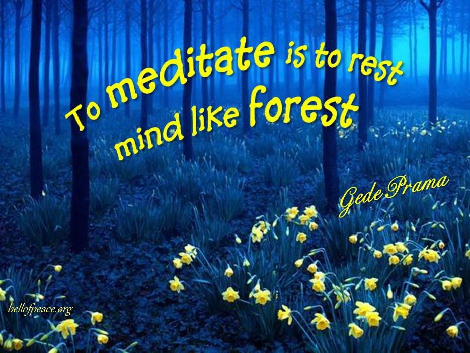 To meditate is... #Peace #gedeprama #bali #beauty #happy #healthy #holy #innerharmony #JoyTrain  Photo courtesy: Pinterest
