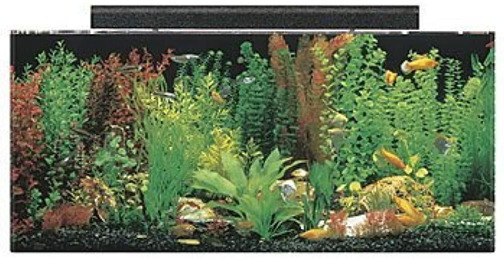 SeaClear Acrylic Aquarium Combo Set  #gifts #giftideas #dog #cat #puppy #pets  #blackfriday #thanksgiving #cybermonday @amazon #amazon #primeday