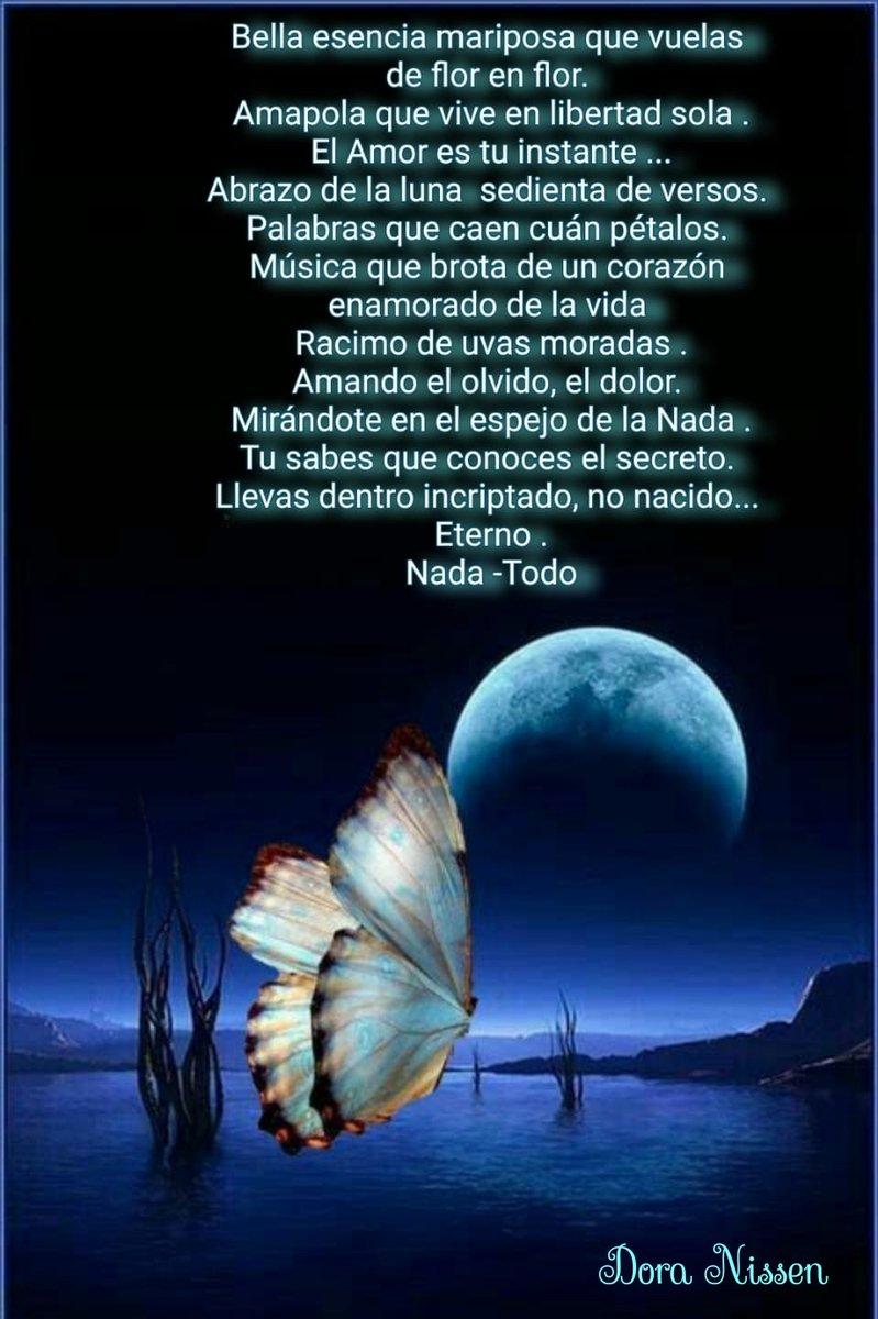 #Bella #esencia #mariposa #amor #eterno #DoraNissen