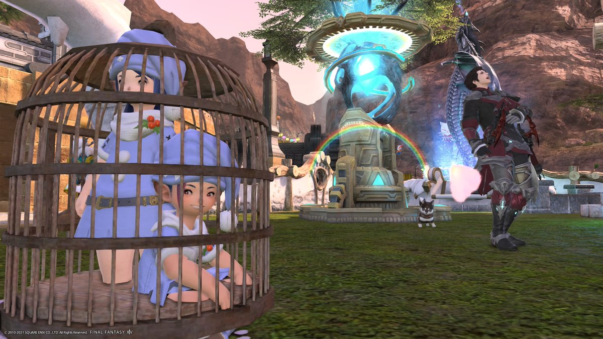 We are trapped >w< #lalafell #amrod @PrinceMeru #ffxiv #cute #lalaboy #GPOSERS #undies #cage #PS4share