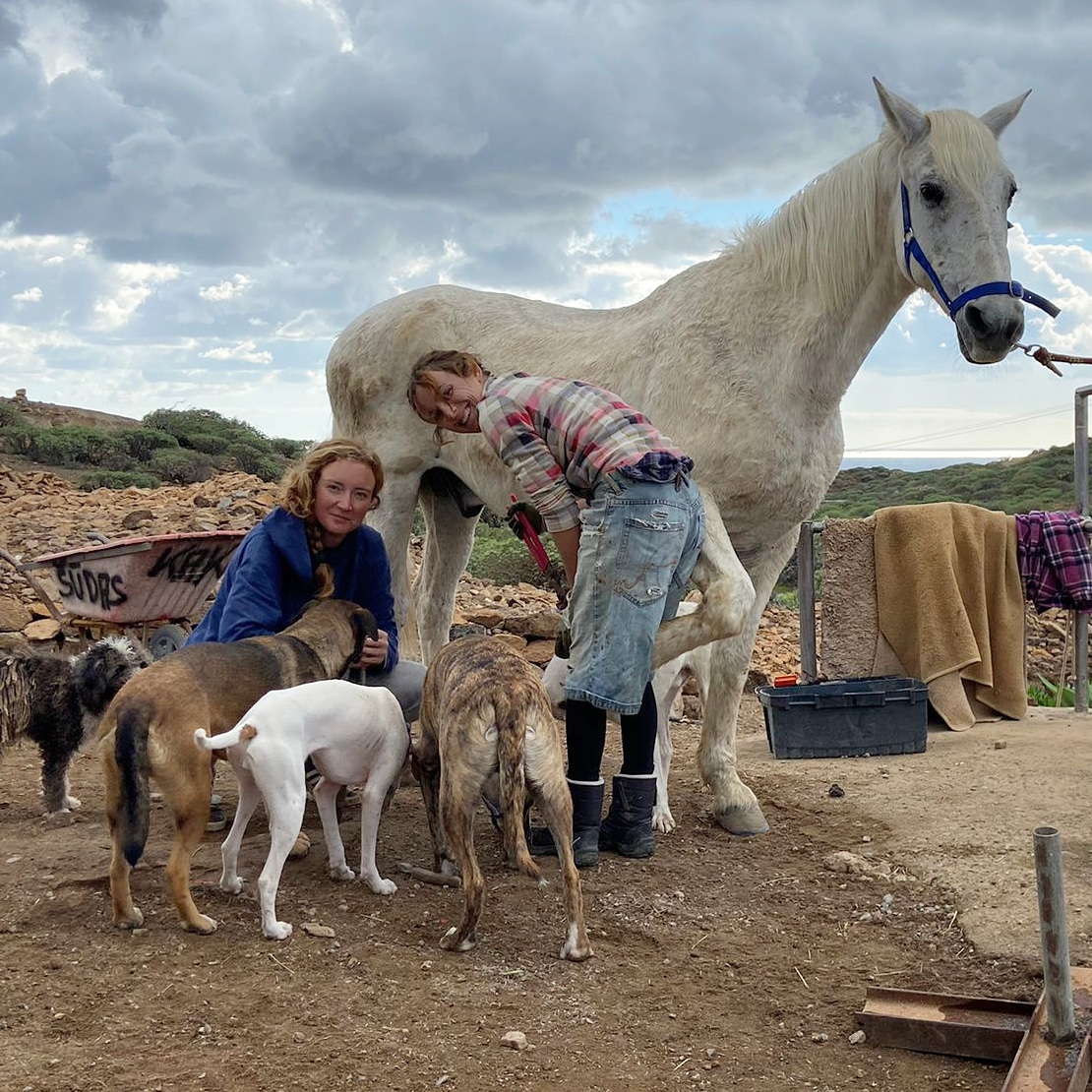 After the storm/flood comes the benefits.Soft feet for trimming!  We live in a volcanic rock, so feet are rock hard, we made the most of the soggy feet and did some easy trimming with the dogs. Our barefoot journey is on YouTube. #barefoothorses #barefoothoofcare #naturalhorse