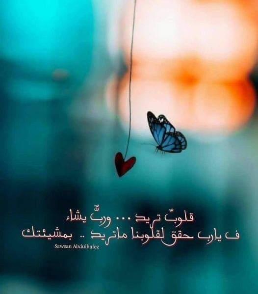 يا رب لي أمنية في صدري قد أسقيتها بالدعاء فأزهرها اللهم بالإجابة .  #يارب ❤