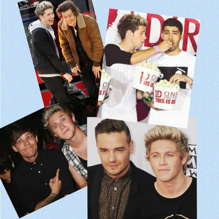 which niall friendship is your favourite?? #NiallHoran #1BWatermelonSugar #OneDirectionReunion #LiamPayne #LouisTomlinson #ZaynMalik #HarryStyles #Leeroy #firstpost