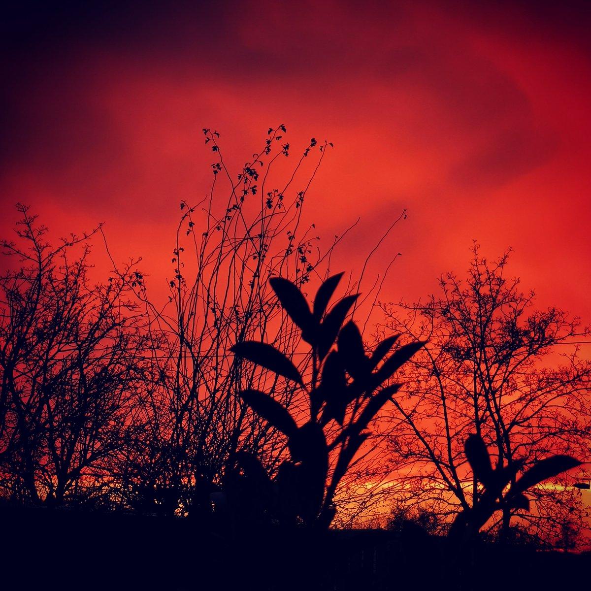 #sunset #pfaffenhofenanderilm #hablKunst #manfredhabl #hablfotografie #heikehabl