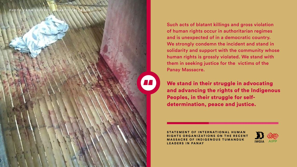 121 international human rights organizations, led by the International Work Group on Indigenous Affairs and the Asia Indigenous Peoples Pact, condemn the massacre and illegal arrests of indigenous Tumanduk leaders in Panay last December 30, 2020. READ: iwgia.org/en/philippines…