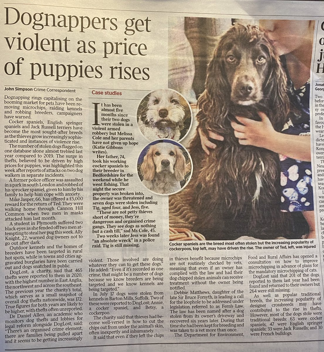 TY @thetimes for raising awareness about #DogTheft and #FernsLaw : Dognappers get violent as price of puppies rises #PetTheftReform @thejohnsimpson @Dr_Dan_1 @DoglostUK @VetsGetScanning @ZacGoldsmith @marcthevet @tomhunt1988 @RobertBuckland