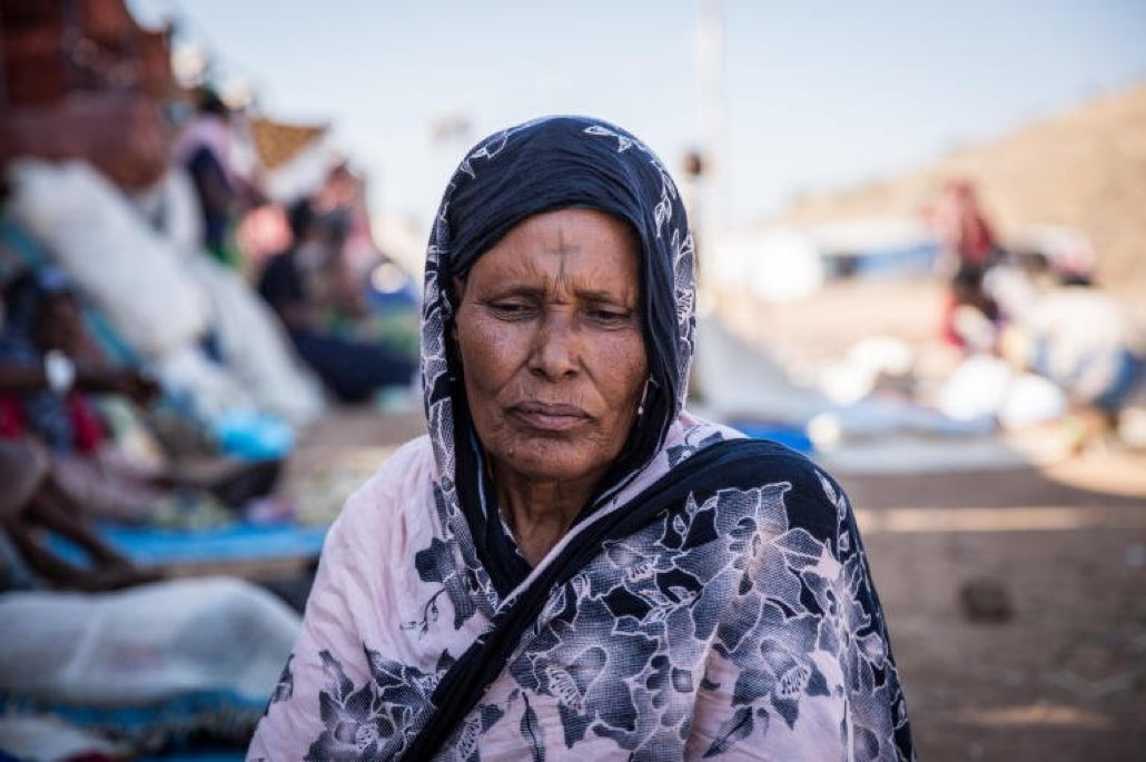 Statements from countless Refugees in Sudan camps speak of violence & destruction in Tigray. #BidenTakeAction please sanction Ethiopia for all atrocities committed on the people of #Tigray. @JoeBiden @KamalaHarris were counting on you to stand up for human rights #TigrayGenocide