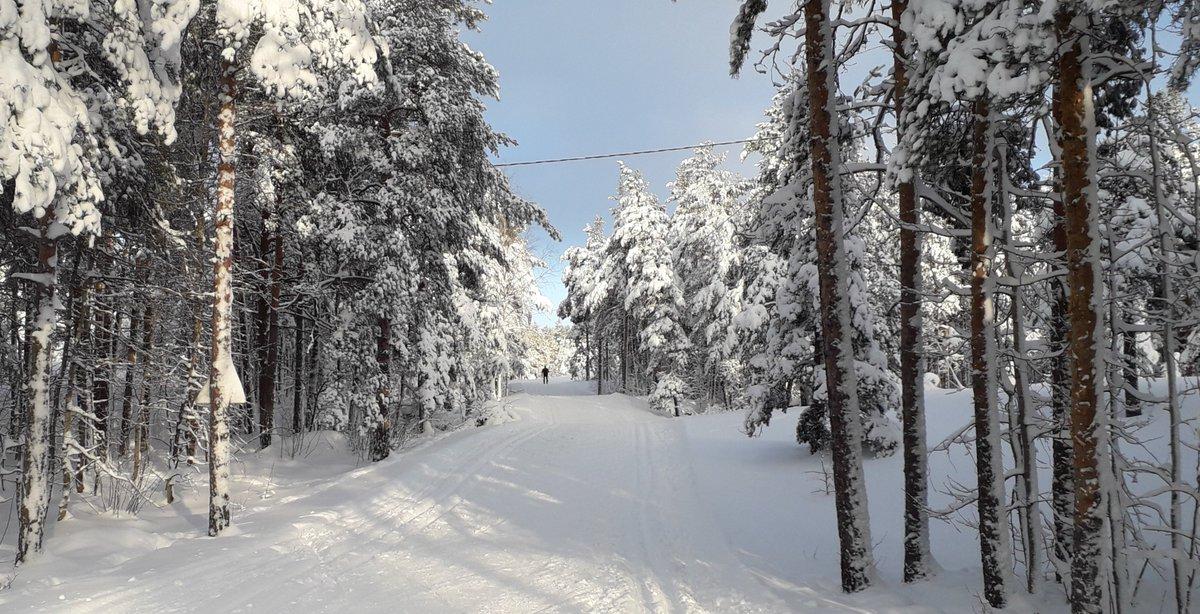 Tietäjät ne tietää, hiihtäjät hiihtää.  #hiihto #skiing #SaturdayMotivation