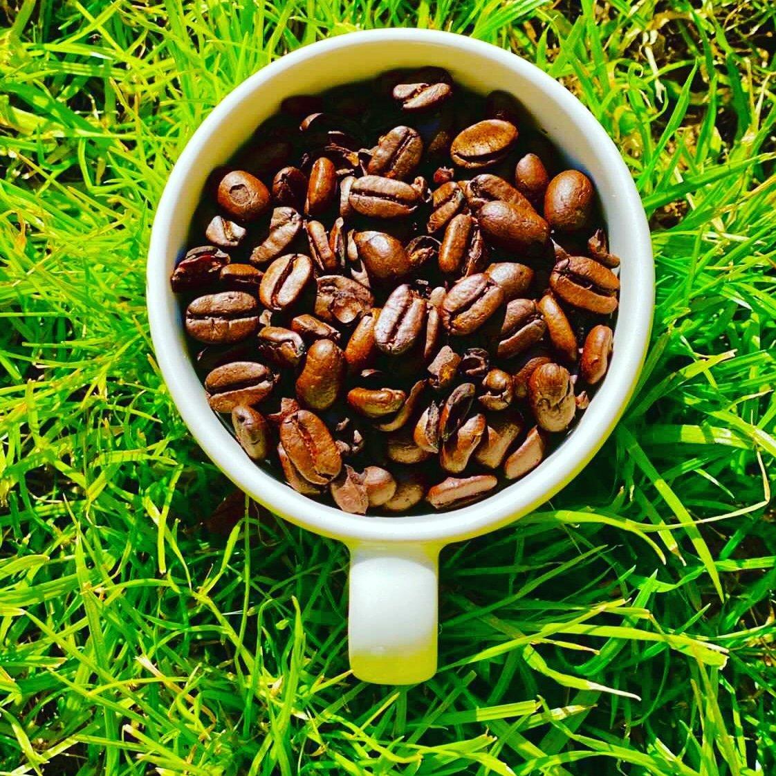 Happy Saturday, ya'll.   #coffeeaddict #coffeelife #cofferoaster #coffeedaily #coffeevibes #espresso #flavor #coffee #Coffeeroaster #veteranowned #blacktrianglecoffee