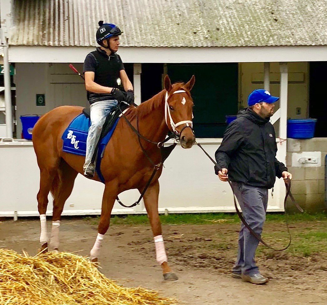 test Twitter Media - The year @bradcoxracing had in 2020 was remarkable. Truly been fun to watch his insane rise from when we first met in '14. Lots of hard work and amazing team behind him. So proud to see him as Eclipse Finalist (and strong chance to win) after 4 BC wins and another KY Oaks win 👏 https://t.co/pCufnUczxO