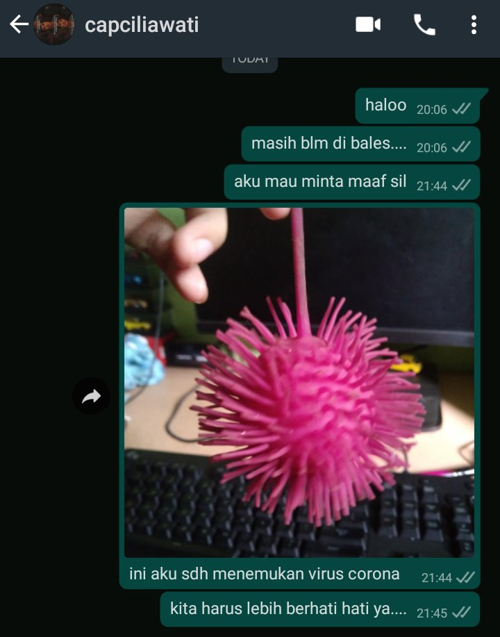 chat aku bersama capcil part 2 #viruscorona #mintamaaf