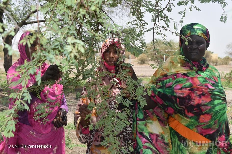 Geal saw first-hand the toll deforestation has taken on the environment.  That's why the South Sudanese refugee and her neighbors made it their goal to plant 1 million trees. #GlobalGoals