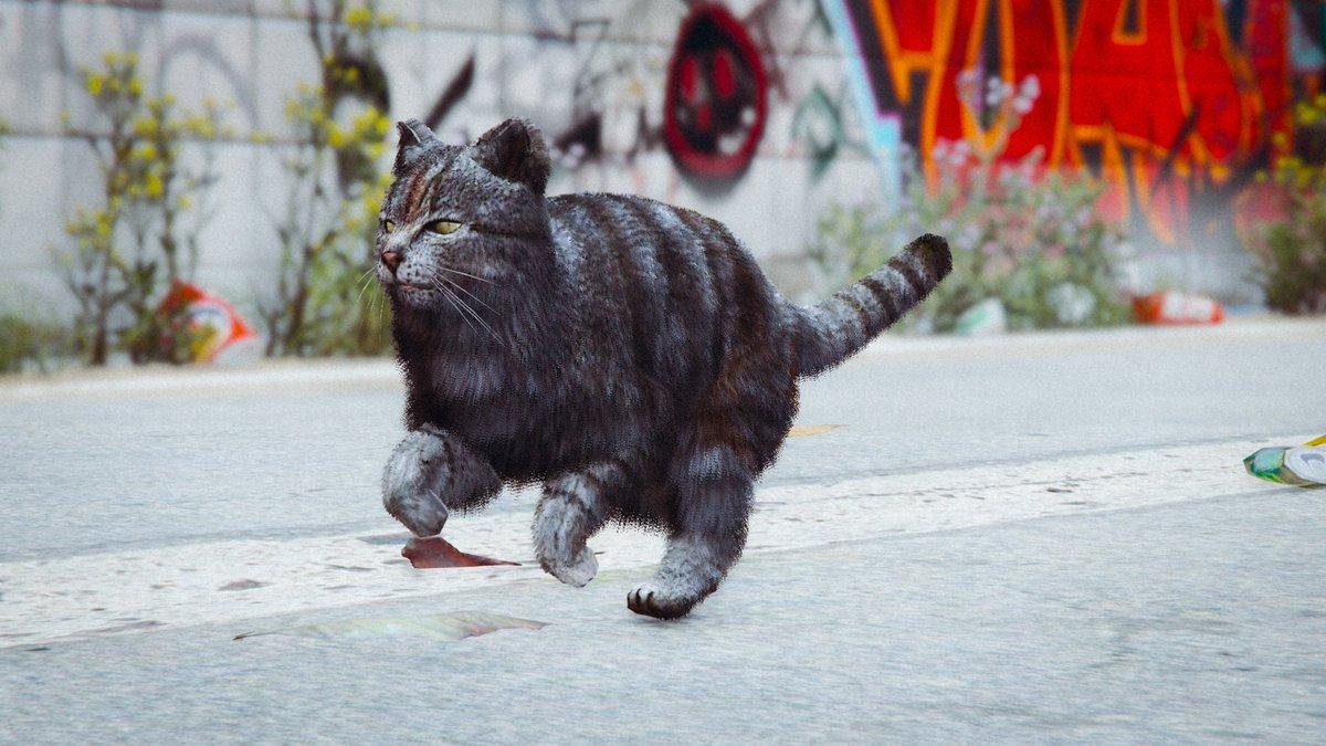 GTA kitty! 😻   #Caturday #kittiesaresonice #cat #cats #gaming #GrandTheftAutoV #gta #GTAV