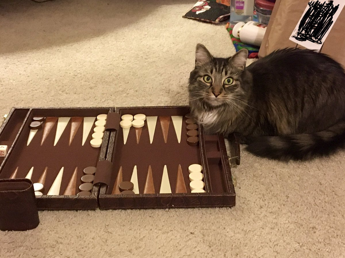@thechrisbarron Happy #Caturday to you Chris! I taught Sam to play backgammon. He's pretty bad at it though, he only beat me once.