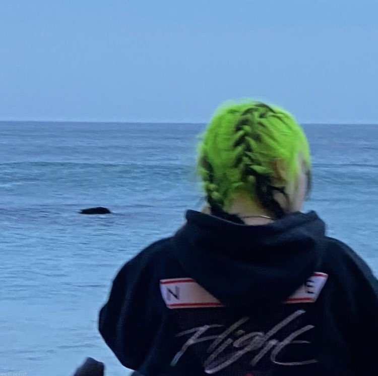 RT @ourpartyisover: billie eilish with braids; a very necessary thread https://t.co/8uXesWKHHD