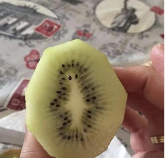 Replying to @simpsonsfeed: Mr Burns kiwi 😂