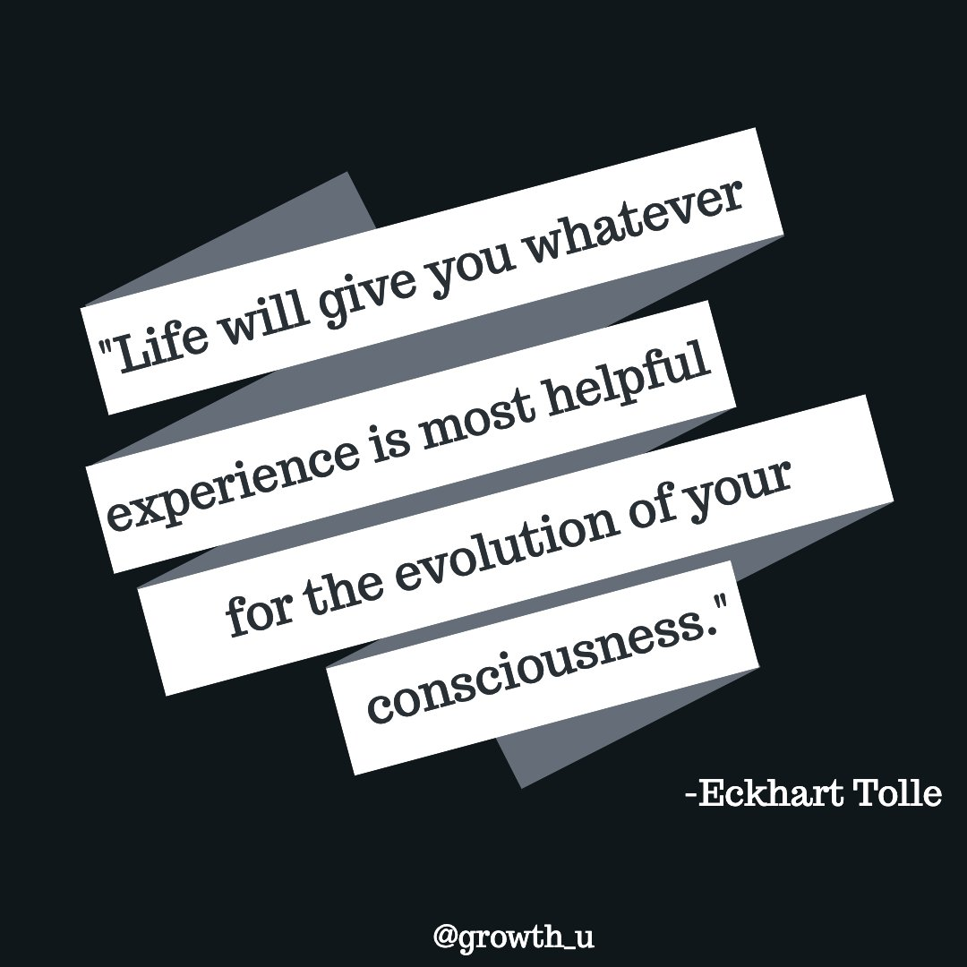 Greet every moment today with the upmost gratitude, no matter the situation.  #quotestoinspire #eckharttolle #dailygrowth #growthlife #trustyourself #adapt #gratitude #quotestoliveby #gratitudeattitude #motivation #inspiration #goals #mindset #success