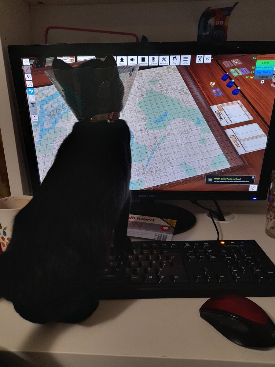 I playing computer games wiv mine mum and mine hoom-Uncle!!!   Dey move a mouse across da screen but dey don't like when mew hunts it?? #Caturday