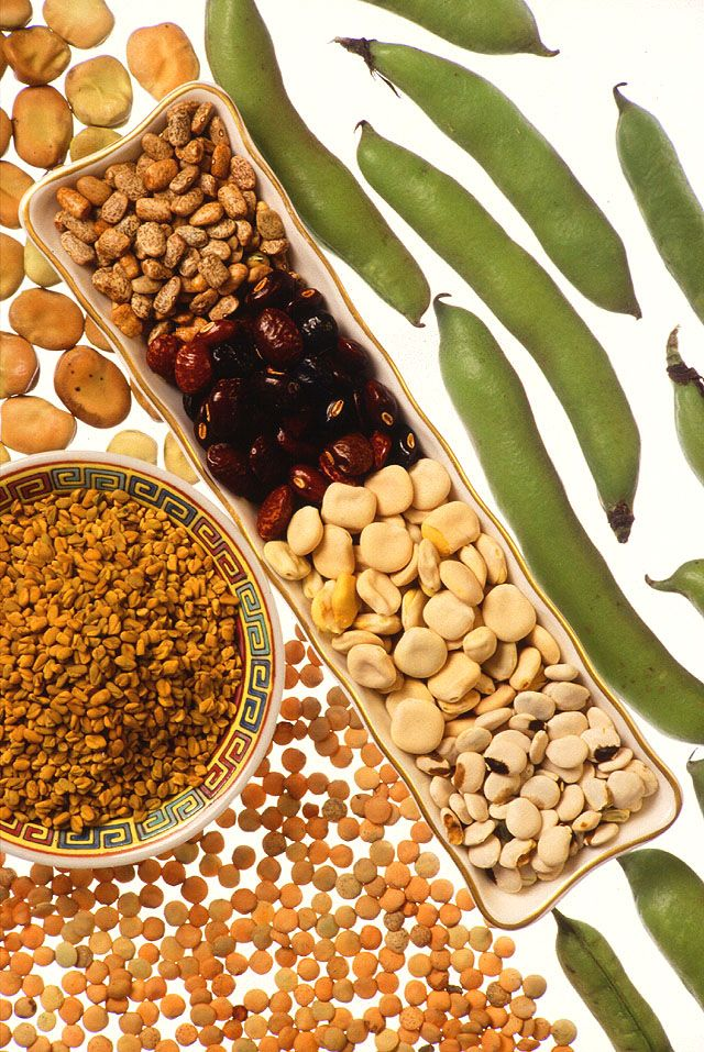 Legumes like lentils - tiny, flying saucer shaped beans, provide iron, a mineral important for learning. Iron helps form healthy red blood cells that deliver oxygen to the brain.  #healthyeating #healthyfood #superfood #healthyliving #healthylifestyle #healthy #brainhealth https://t.co/3CIgg0KQcJ