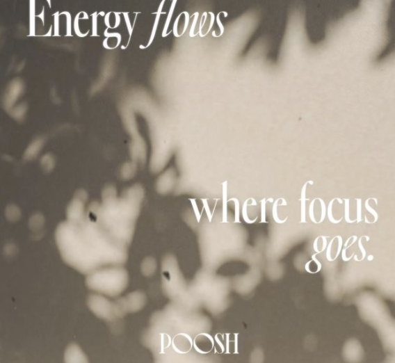 What are your focus and energy going towards this year?