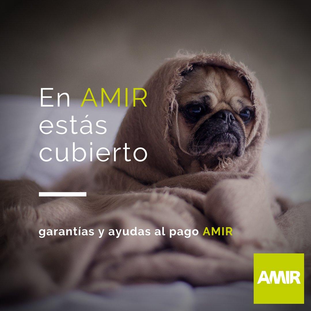 ✅ #garantíadeSatisfacción, ♻️ #garantíadeRepetición, 💳 #ayudasalPago... Con nosotros puedes estar tranquilo, porque tu preparación para el #MIR trae un montón de ventajas. 🔝🔝 #AMIR #garantíaAMIR