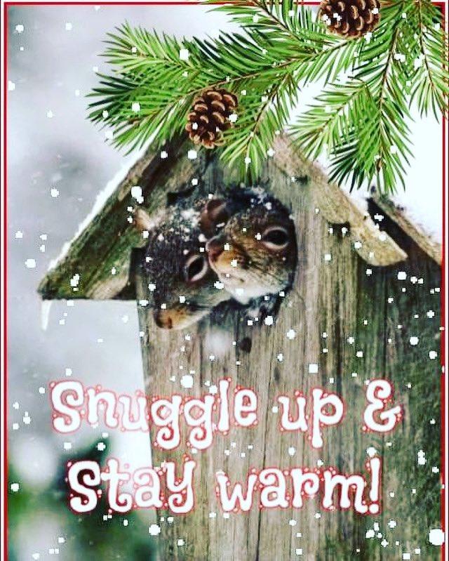 #snuggle #winter #january #StayAtHome #StayWarm #StaySafe