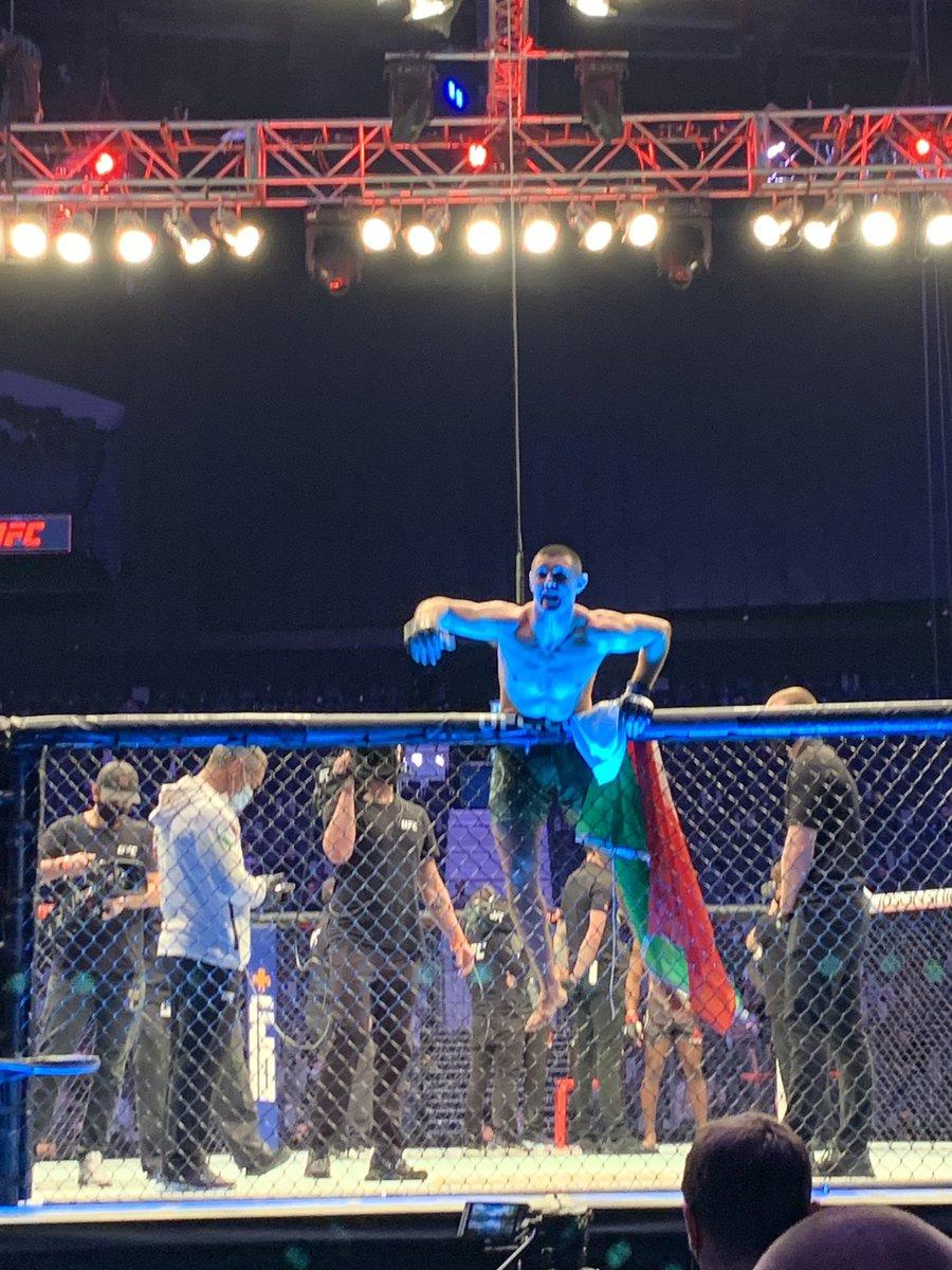 Wow!! Alessio di Chirico gets the finish and KO's Joaquin Buckley!! #UFCFightIsland7