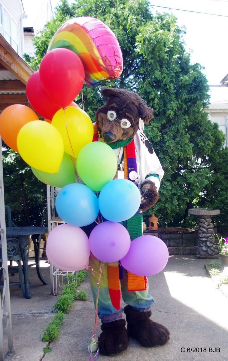#ThrowbackThursday #TBT #Waldolf and his #rainbow #Balloons he got from #ItsMyParty in Dyer IN. 2 year ago in June  #fursuit #fursuiter #fursuiting #Bear #costume