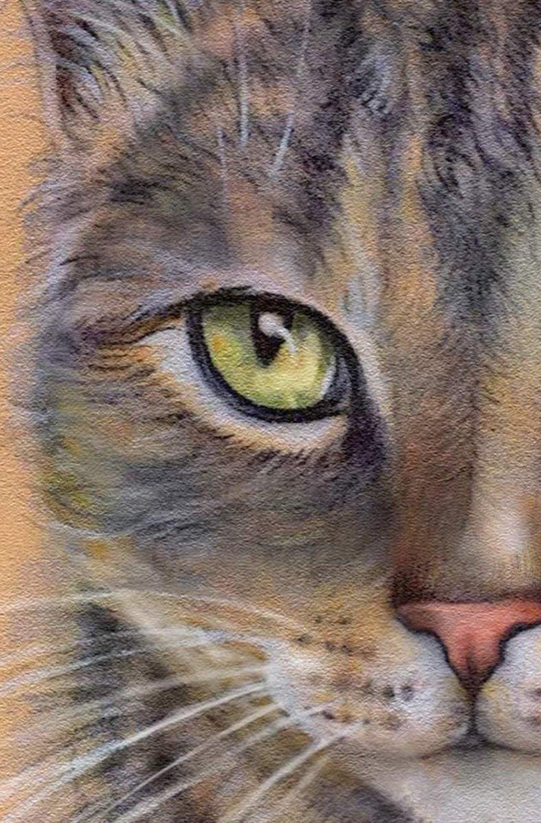 @MaryLTrump Happy #Caturday Mary!