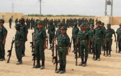 Las pruebas de que El Frente Polisario prepara niños para la guerra... actuamos y denunciamos a nivel internacional ya! O esperamos a que los manden al frente a que los maten? Malditos seáis genocidas de niños. @unicef_es @ONU_es @ComisionEuropea @GIS_SaharaMaroc