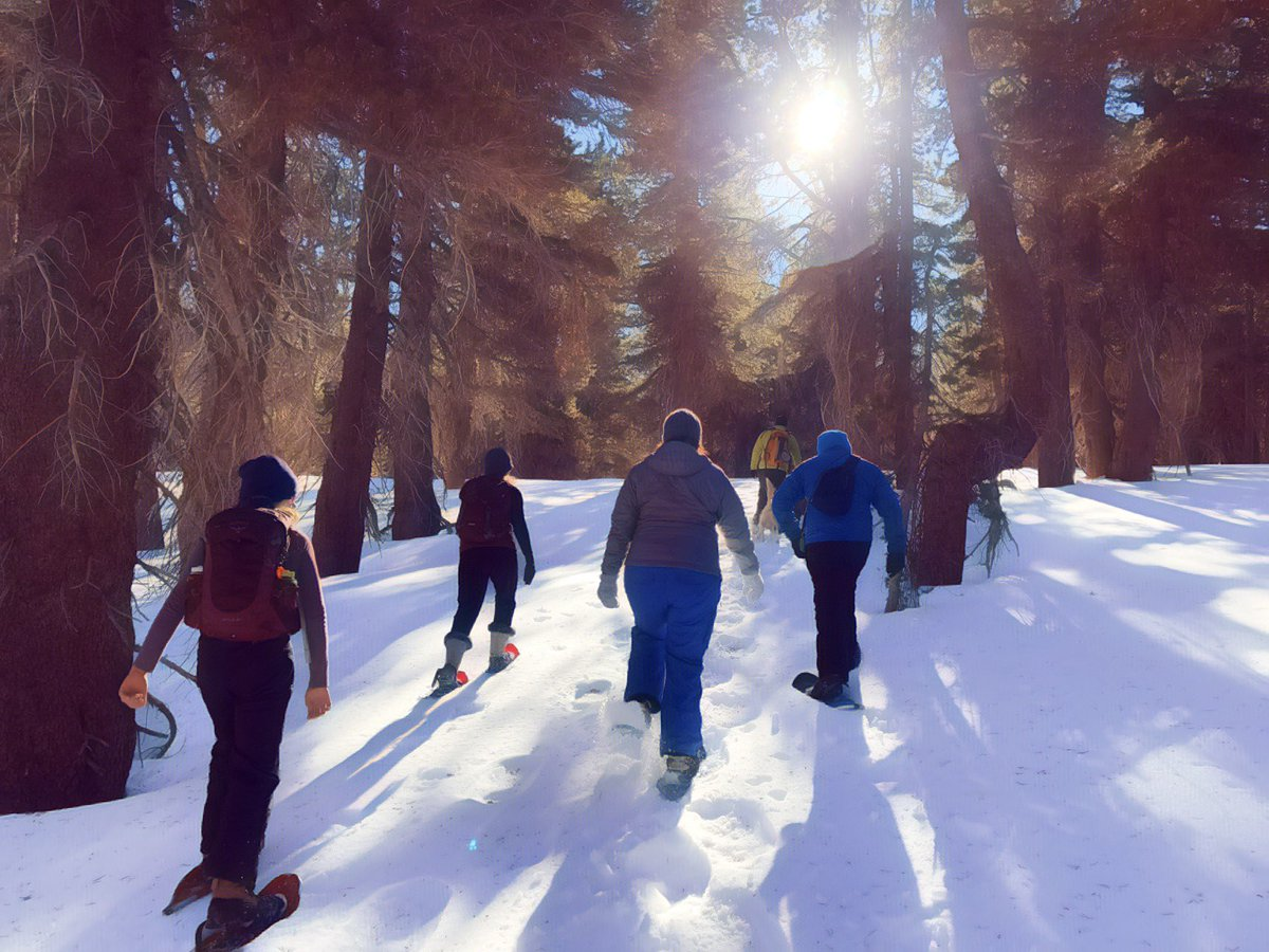 Beautiful bluebird day #snowshoeing in the northern #sierra #nevada with @monrobertson  and friends #outdoorrecreation #getoutside #optoutside #outdoors #outside #naturerx #goodmedicine #winter #trails #snow