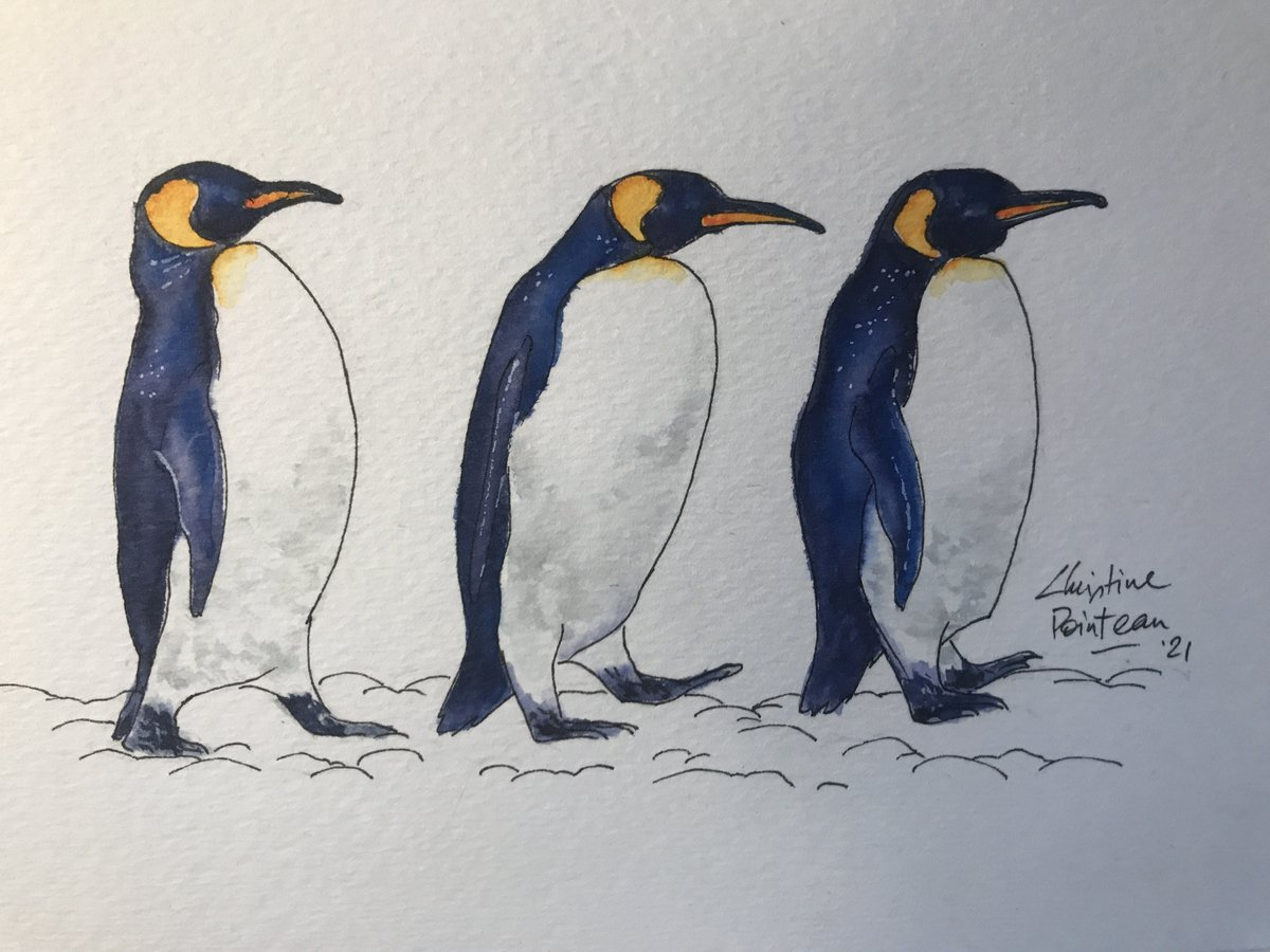 No.21: King Penguins. Done with watercolor markers. . #sketch #sketchbook #sketching #animals #penguins #KingPenguins #animaladay #artchallege #watercolormarkers #watercolor