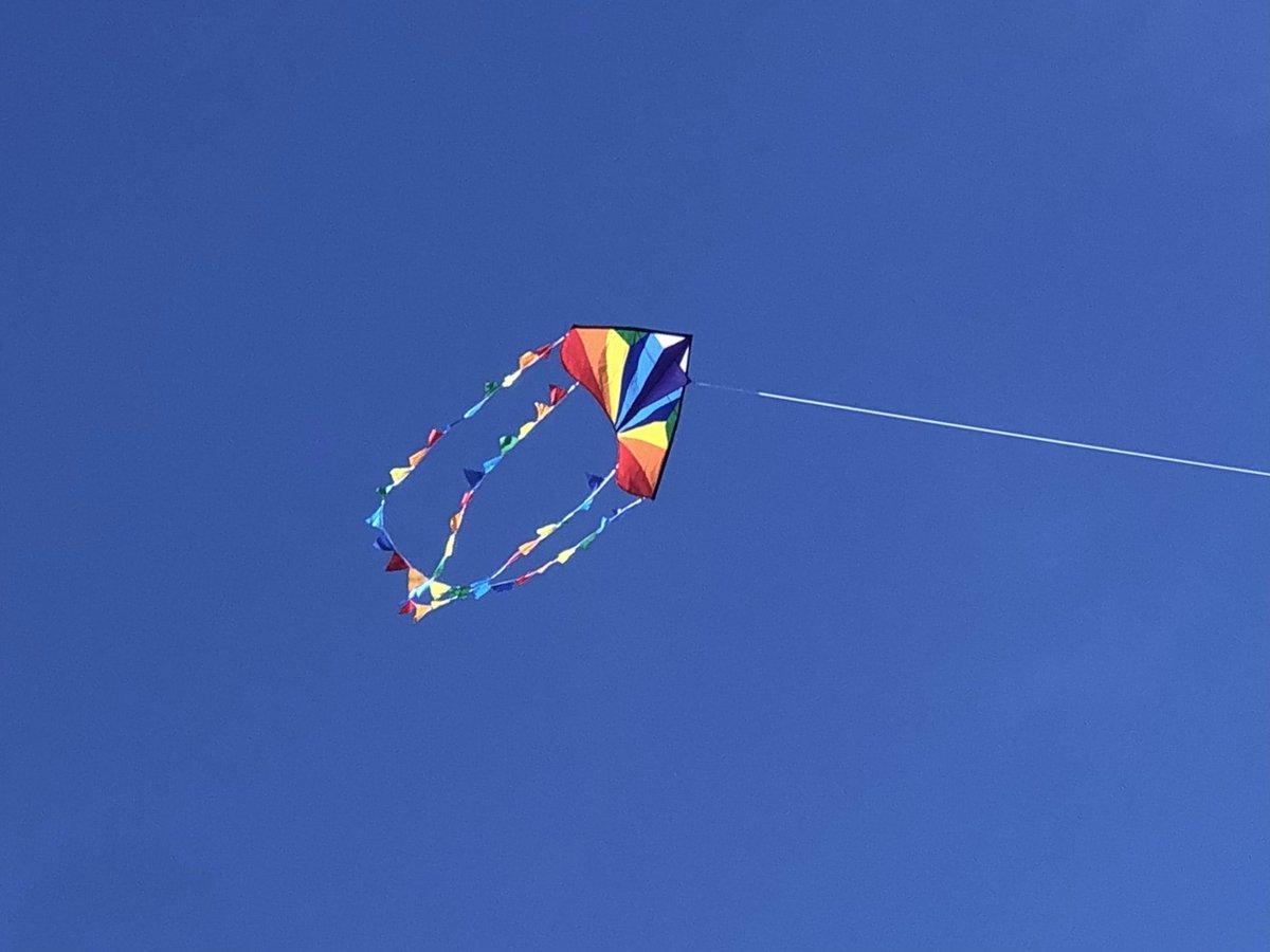 It's kite time... #kiteflying #funwithfriends #outdoorlife #SocialDistancing #KiteFestival #MakarSankranti #HappyUttarayan