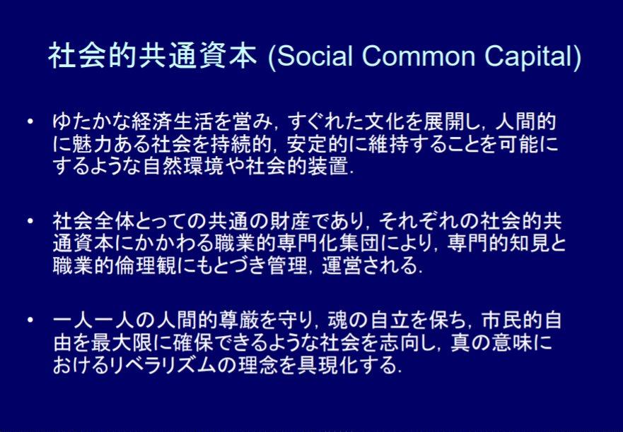 共通 社会 資本 的