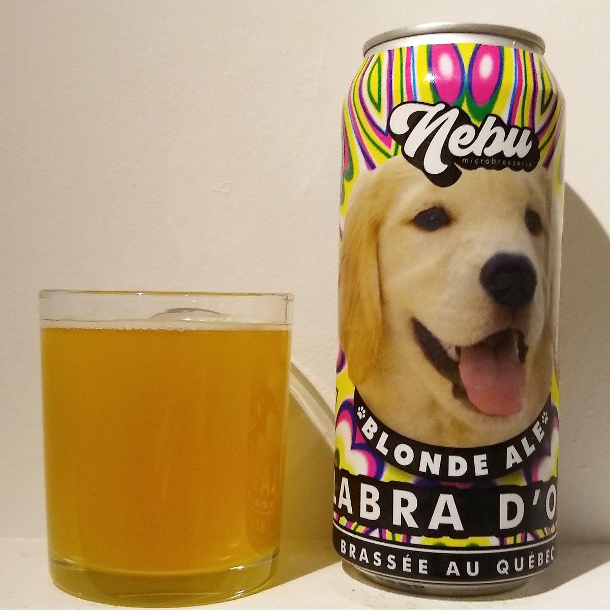 Est-ce que je peux promener ma #bière après 20h? . . #curfew #covid_19 #couvrefeu #beer #dog #chien