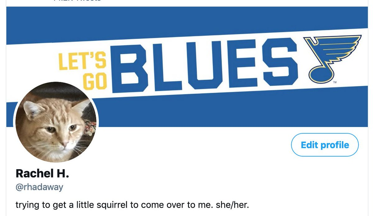 I updated my profile banner since I realized it was confusing to have a random (yet beautiful) orange in my banner and Reg as my profile pic. #stlblues #LGB