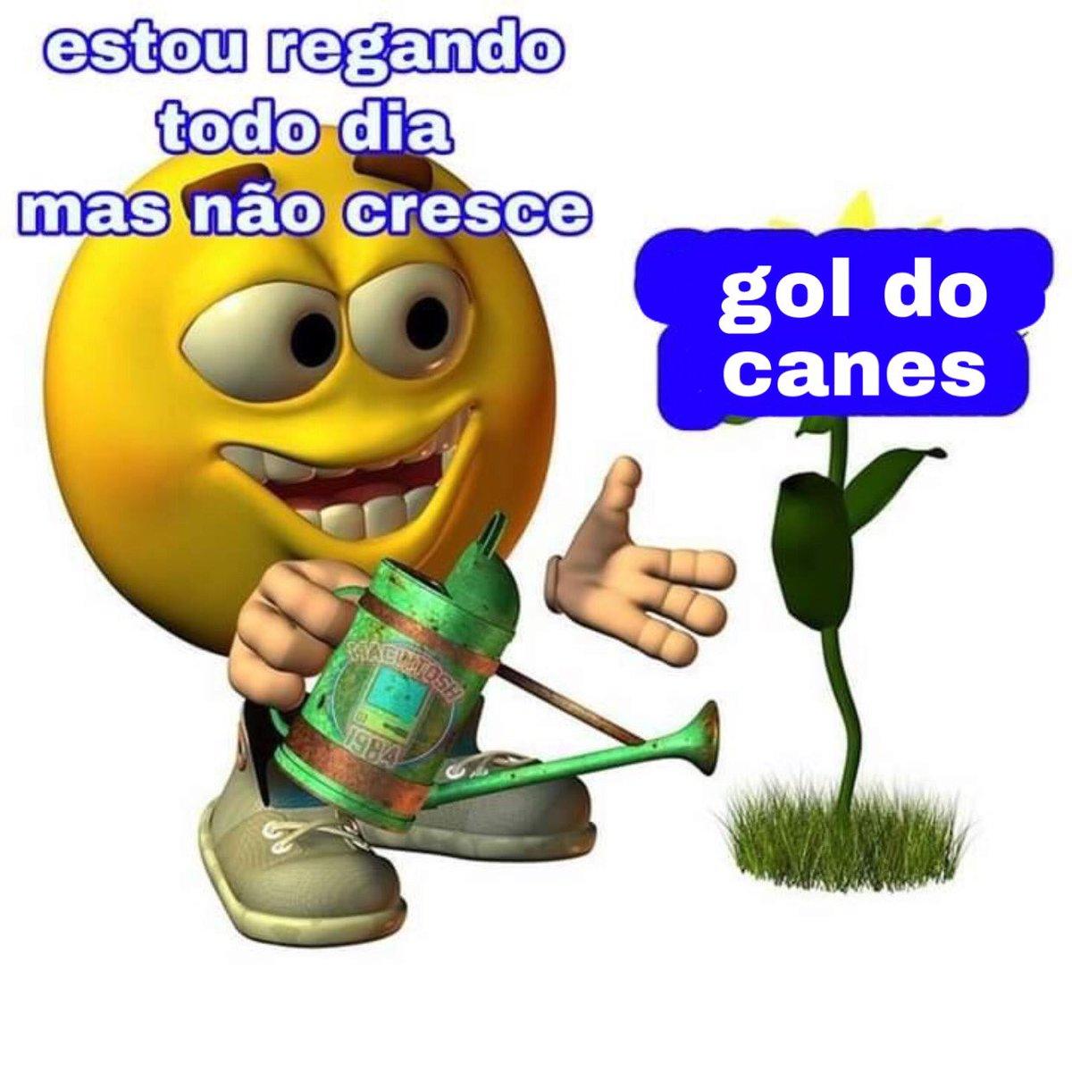 olha.... #LetsGoCanes #LGRW #BrasilTemNHL