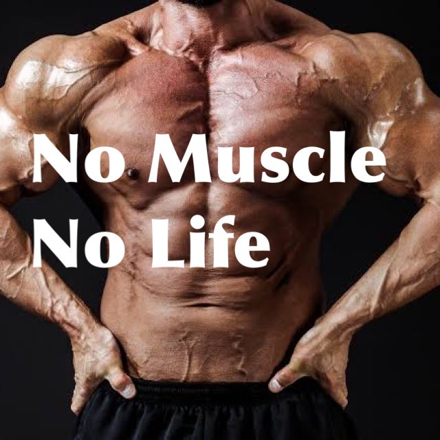 No Muscle No Life  #workout #fitness #fitnessmotivation  #training #trainee  #gym #gymmotivation  #bodymake #筋トレ #筋トレ好きと繋がりたい #筋トレ仲間募集 #筋トレ垢さんと繋がりたい