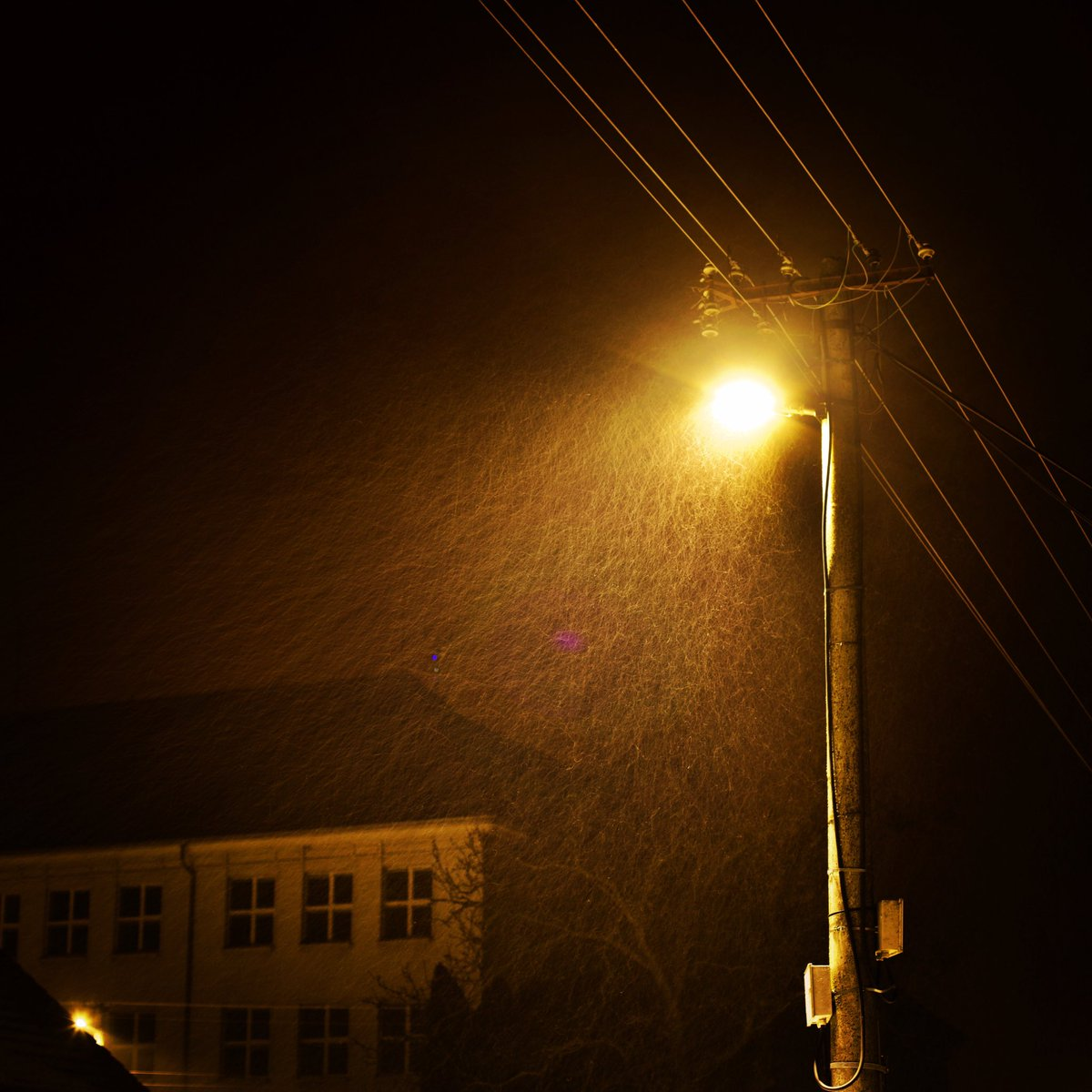 #snowing #winter #night #canonphotography