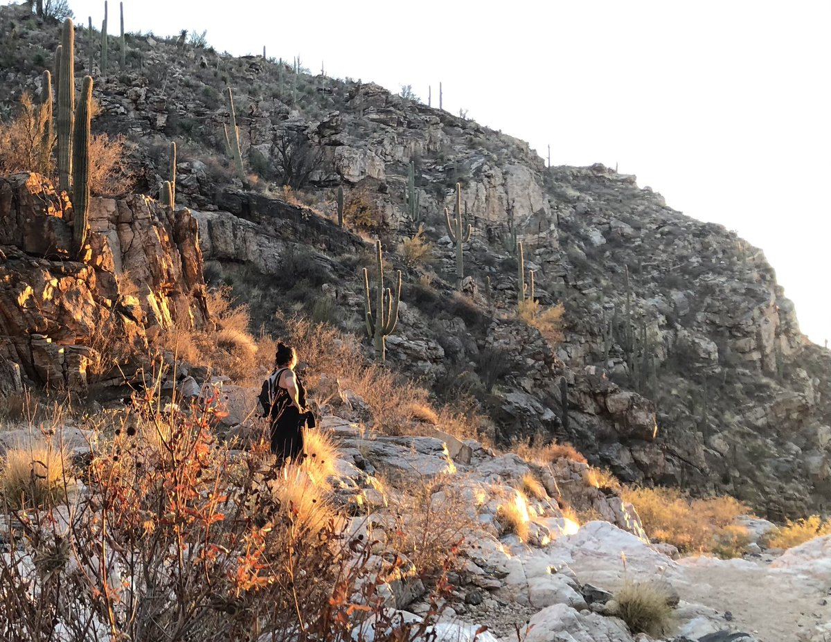 Seeing lots of #Tucson #hiking tweets today. So here are mine from our sunset hike at Tanque Verde Falls.