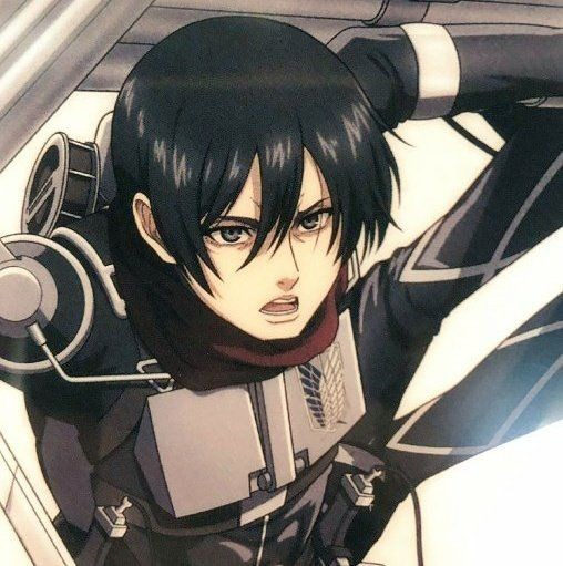 if you see this twt, reply  #ITSTIMEMIKASA aaaah