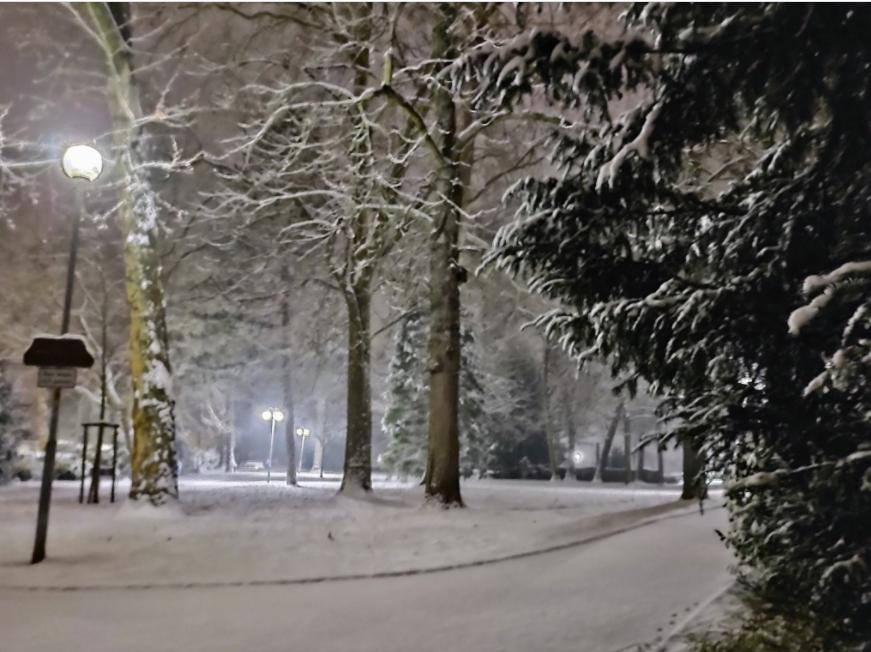 Einen schönen Sonntag: Der #Tag beginnt im #Schnee! #Schneefall #Wetter #Winter @Kachelmannwettr