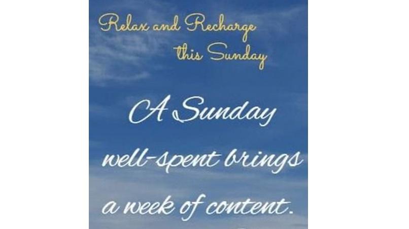 Happy Sunday, #BEEhive! ☀️🐝💛  #RelaxAndRecharge #SundayThoughts #SundayMorning #SundayFeels