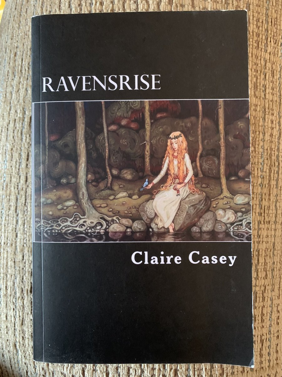 Doing well with this challenge from @MinxyOwl  Choice is the problem! Amongst my #BookRecommendations try Ravenrise by @CCaseyWriter  Sue Oh, and don't forget your Beanie! ⤵️   The book⤵️