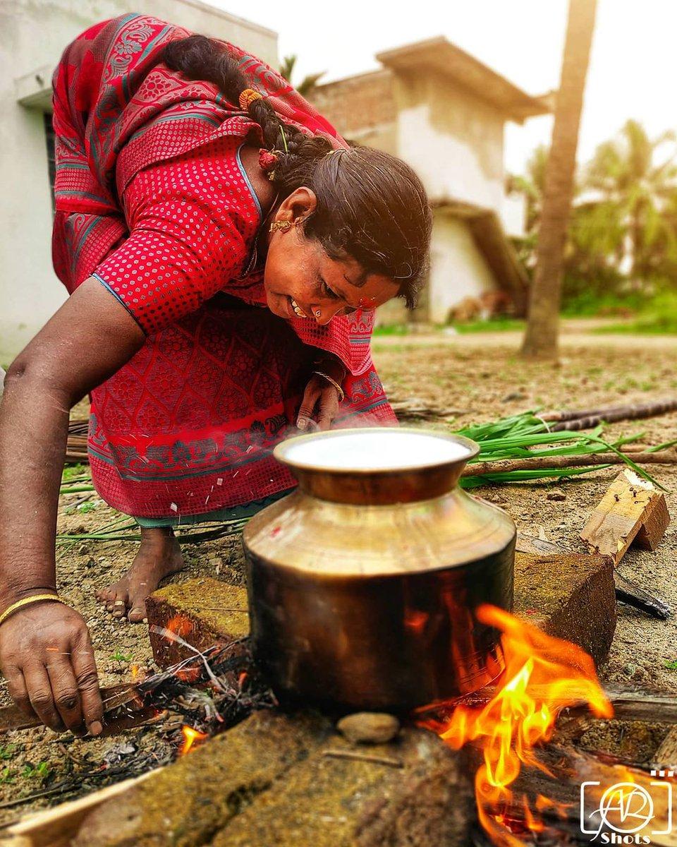 The Joy Of Celebration ☺️🎉❤️ #Pongal
