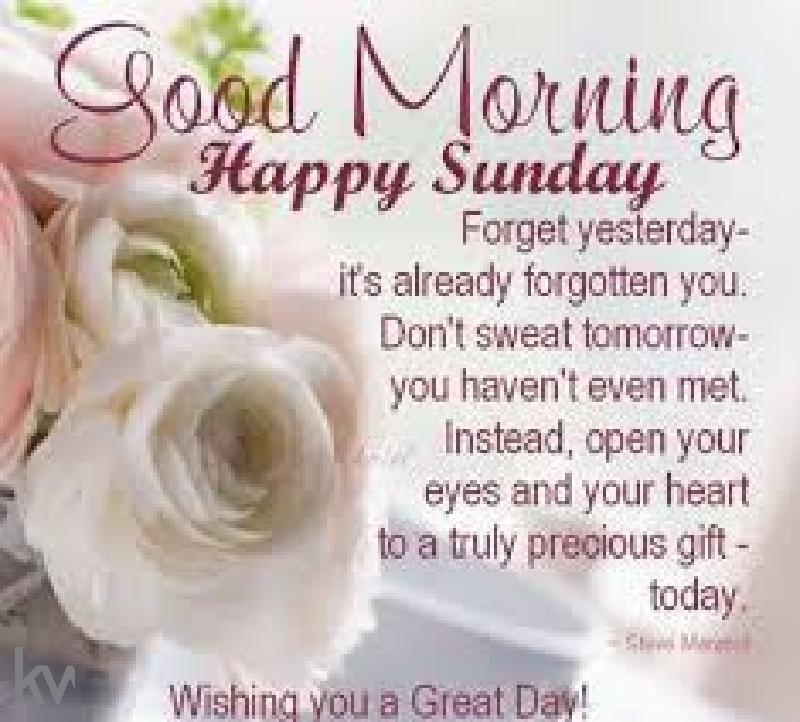 Good Morning! Happy Sunday! #sundaymorning #sundayvibes #sundaythoughts #sundaythoughts