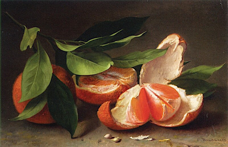 test Twitter Media - World is crazier and more of it than we think, Incorrigibly plural. I peel and portion A tangerine and spit the pips and feel The drunkenness of things being various.   Louis Macneice https://t.co/1tnatxi2nq