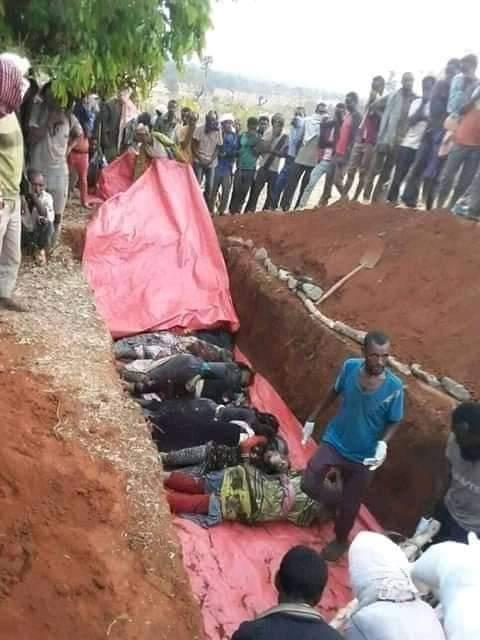 Stop Genocide in Metekel, #Ethiopia #UN  #AU #HumanRightsWatch  #NobelPeacePrize  #WordPress  #heutejournal  #Abendzeitung  #