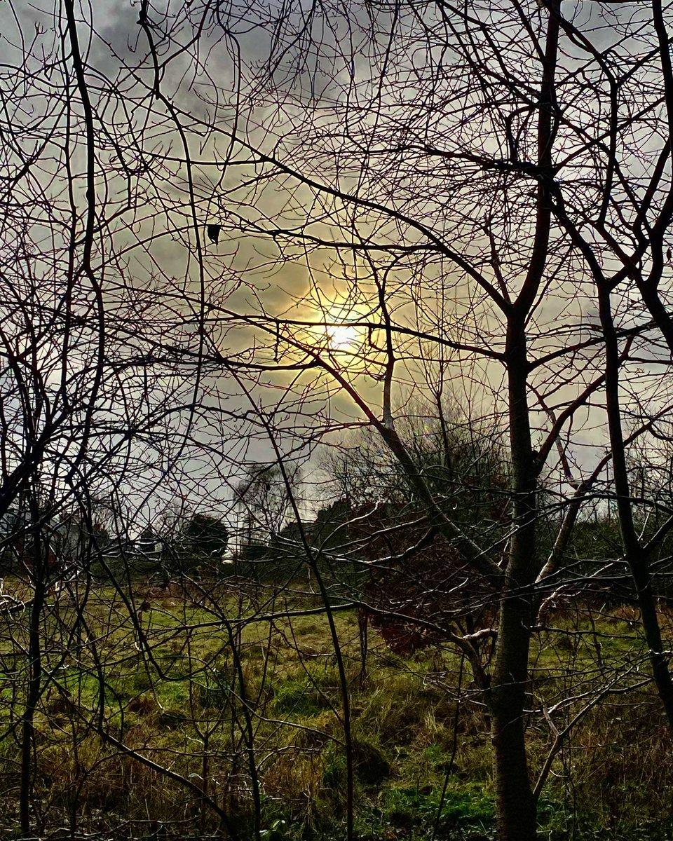 "#day13 #lockdown3 #wildlockdown  ""the earth has music for those who listen"" - #ShakespeareSunday  #lockdown #exercise @ryebankfields #manchester #mindfulness #natureconnection #nature #naturephotography #TwitterNatureCommunity #ThinkBIGSundayWithMarsha #wellbeing #staysafe"