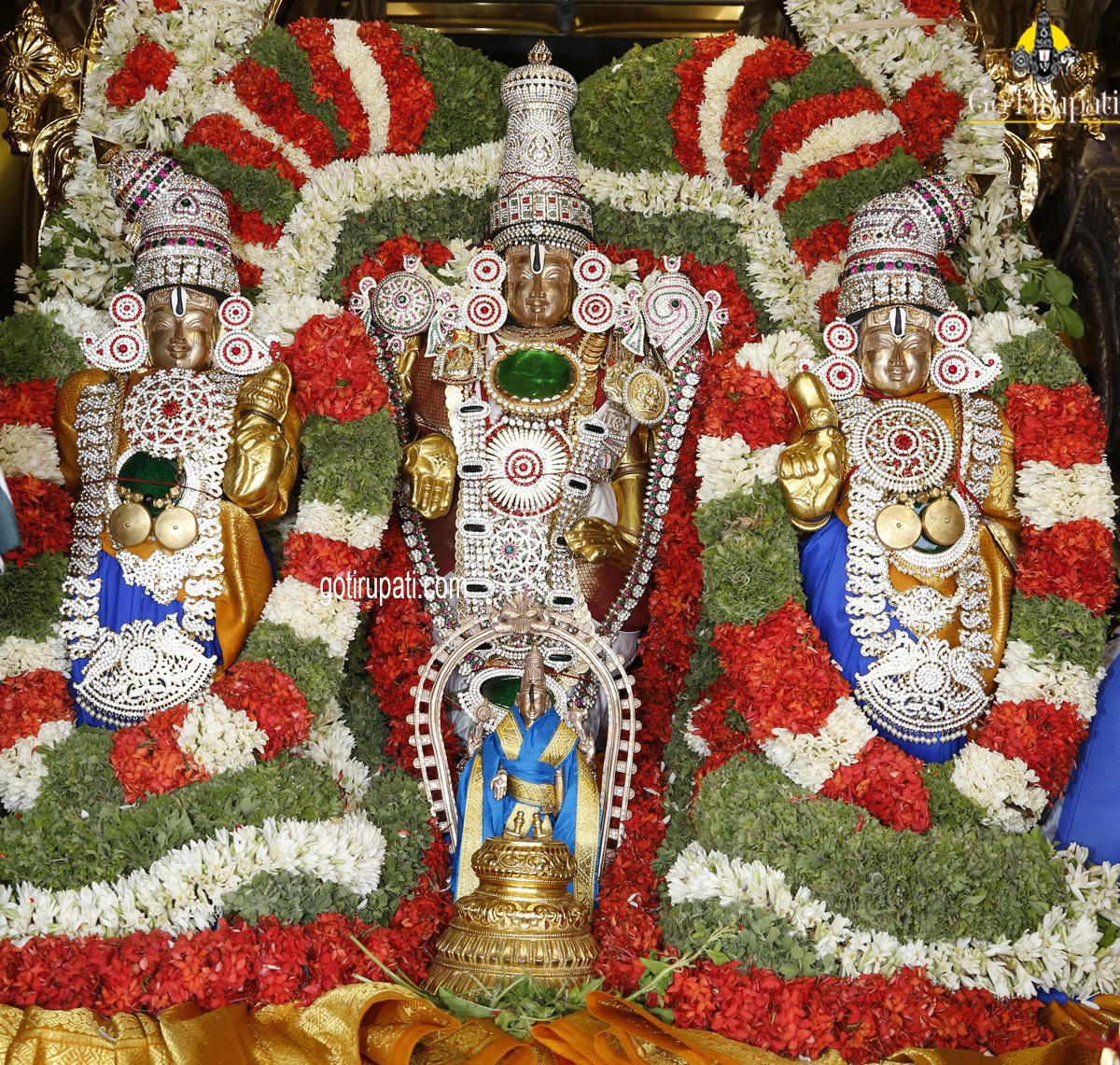 Replying to @GoTirupati: Sridevi Bhudevi Sametha Sri Venkateswara Swamy Utsavam